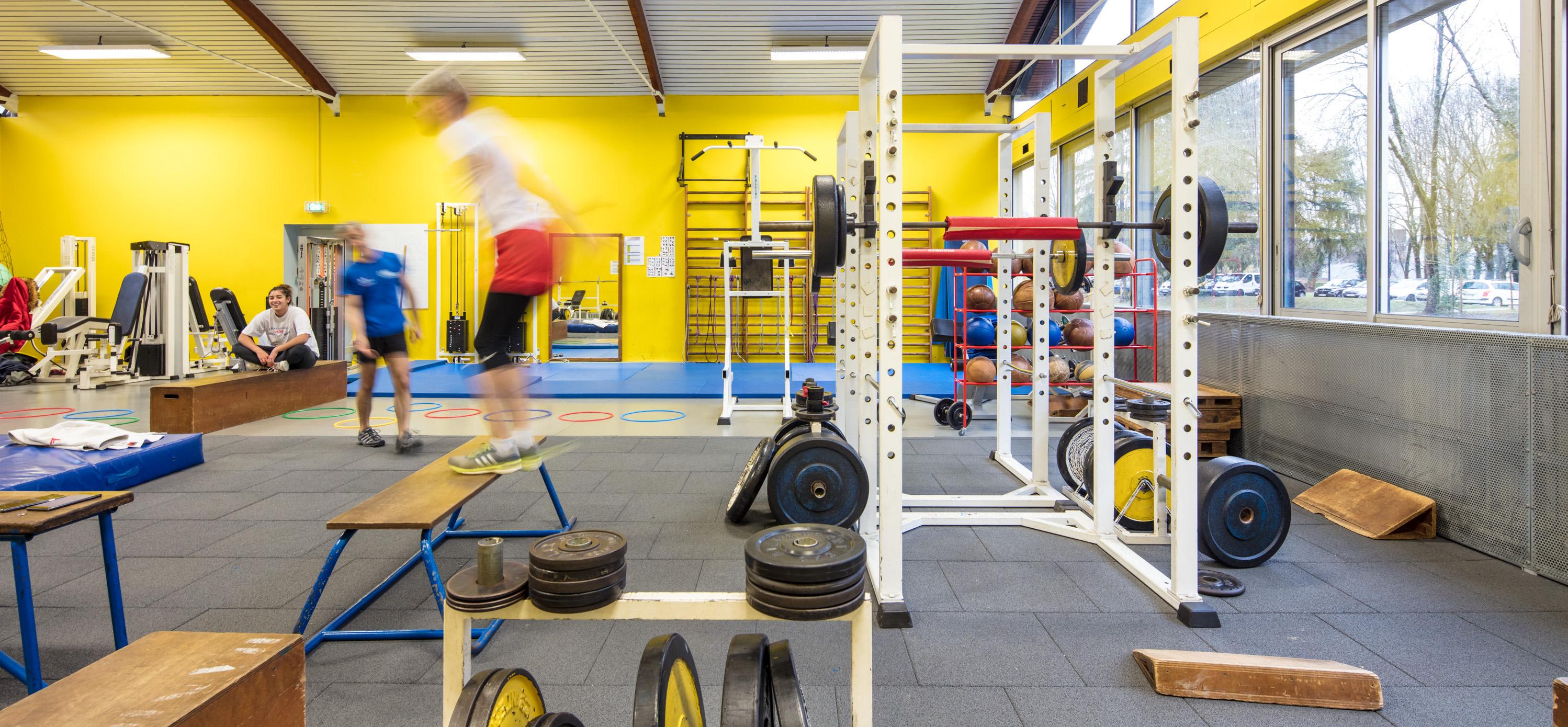Service Universitaire Des Activites Physiques Et Sportives Suaps